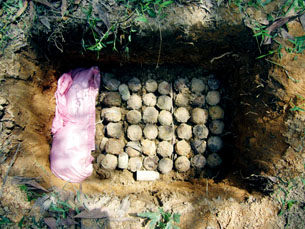 It took the EOD team two days to safely destroy these unexploded bombies in place.